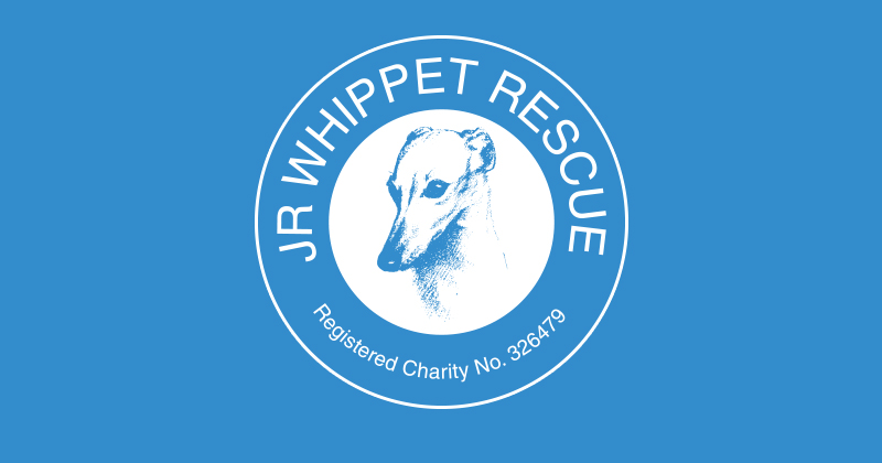 JR Whippet Rescue Stall in July