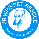 JR Whippet Rescue